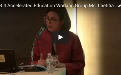 11.1.4 Accelerated Education Working Group: Widening access, raising standards
