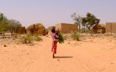 Niger: How do you get girls to school in the least educated country on Earth?