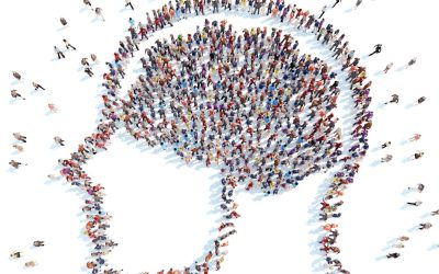 Brain-Based Learning: Learning and the Social Brain