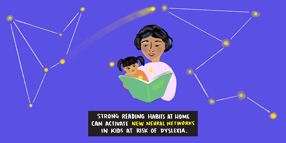 Reading to Rewire: How early reading at home may reroute the brain's networks