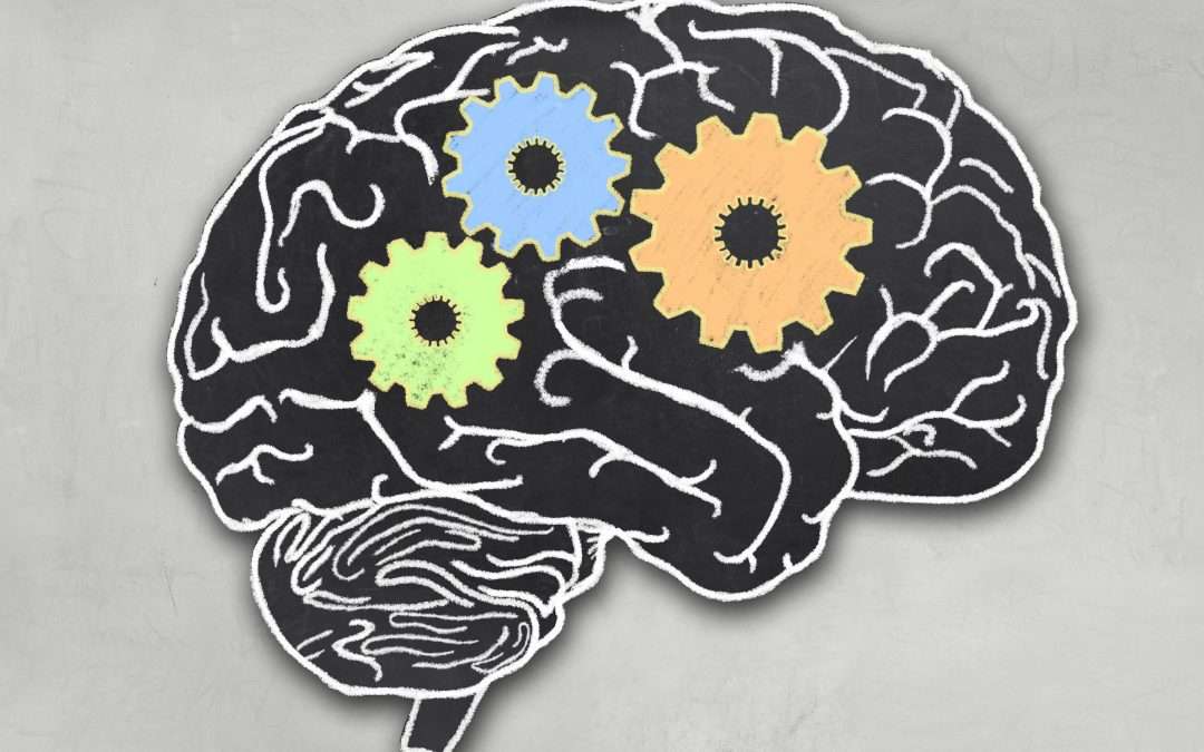 Helping Students Develop Executive Function Skills